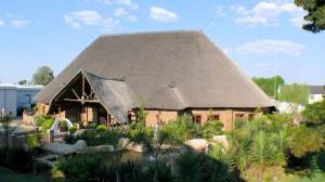 Serengeti Lapa (Cover)